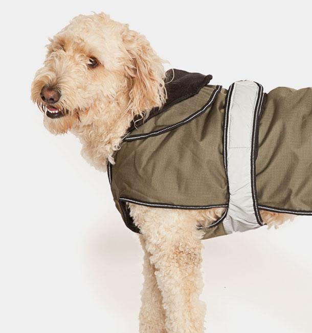 2 in 1 dog coat all season