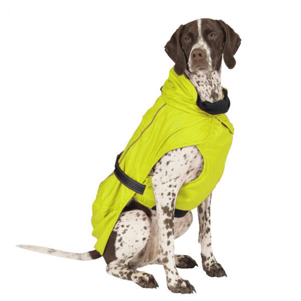 Ancol Extreme Blizzard Dog Coat