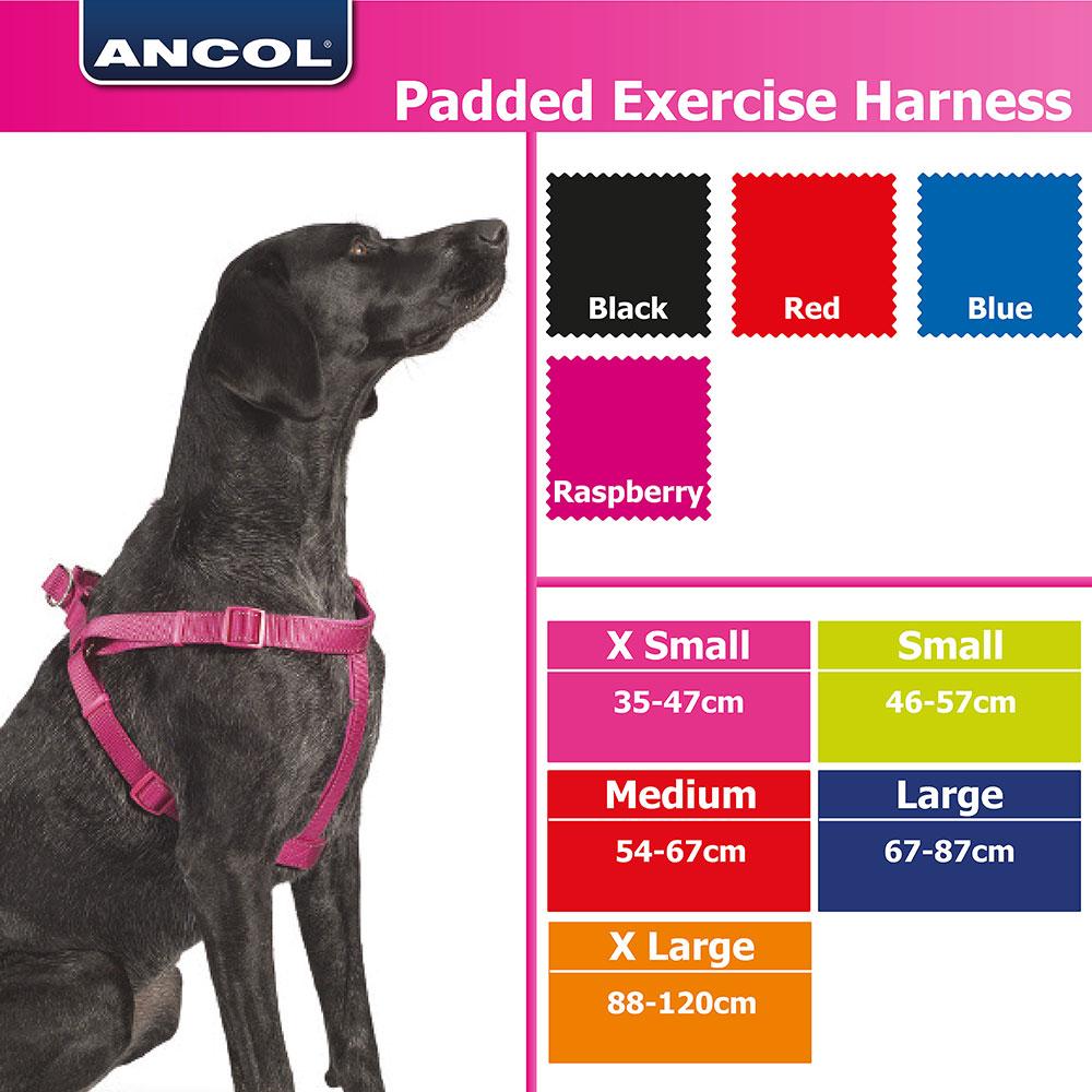 ANCOL PADDED NYLON DOG HARNESS